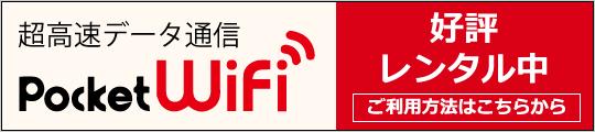 Pocket WiFiご利用について